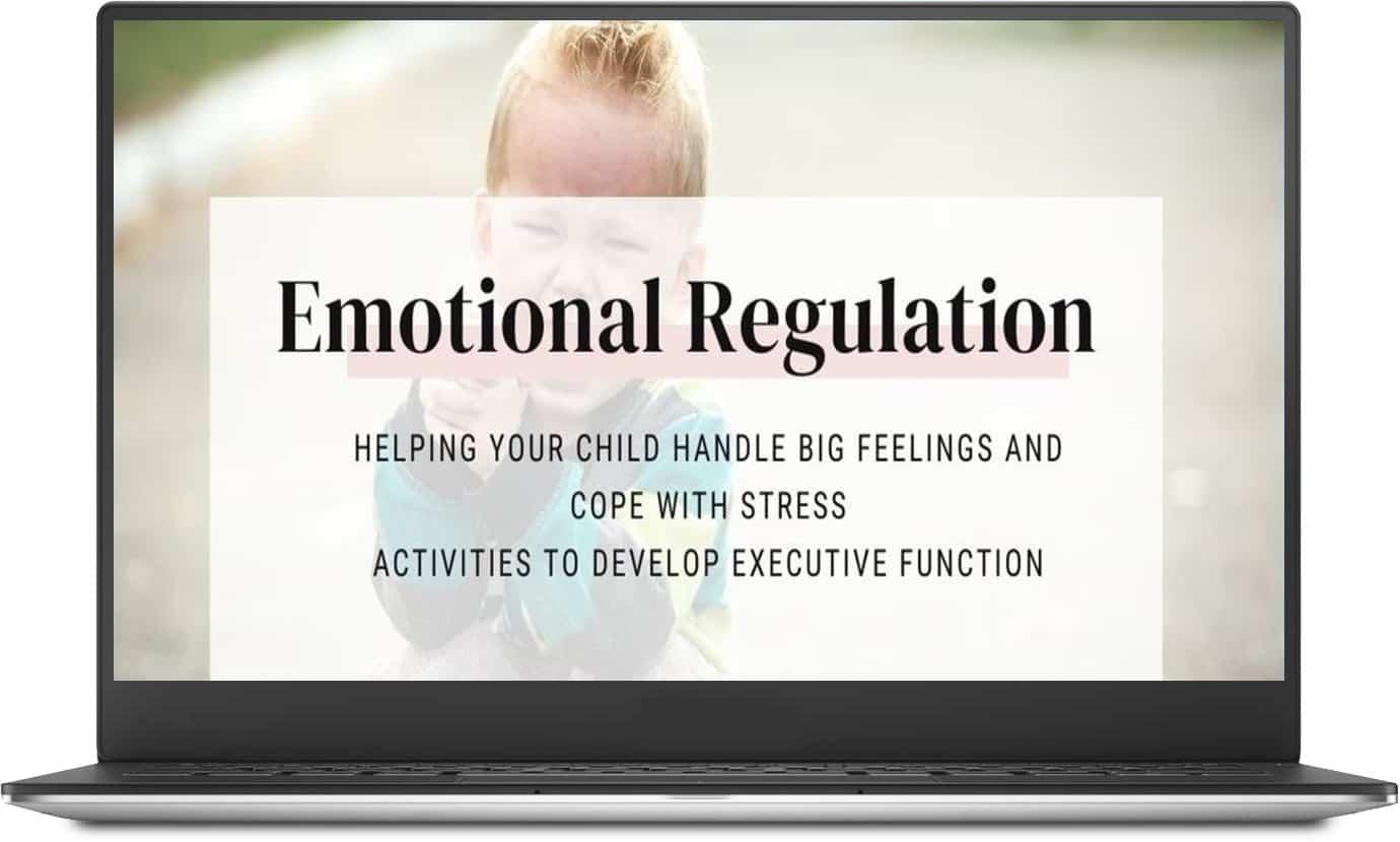 masterclass on emotional regulation in kids
